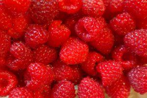 raspberries-227976