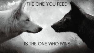 Blog post 2 wolves2